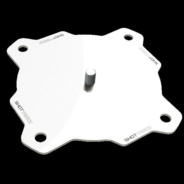 ViB Mounting Plate